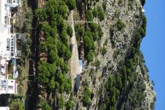 Mijas Pueblo (18)