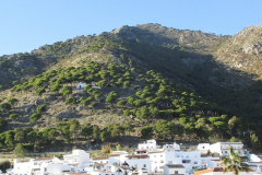 Mijas Pueblo (29)