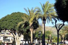 Mijas Pueblo (32)