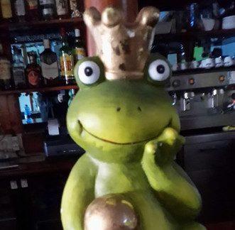 Frog & Co